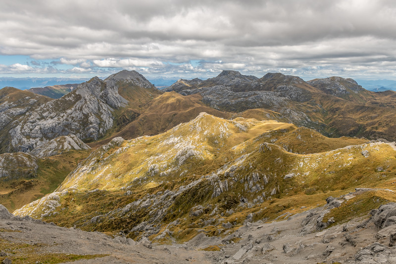View from Culliford Hill: Mount Bell, Pisa, Mount Owen and Replica Hill. Kahurangi National Park.