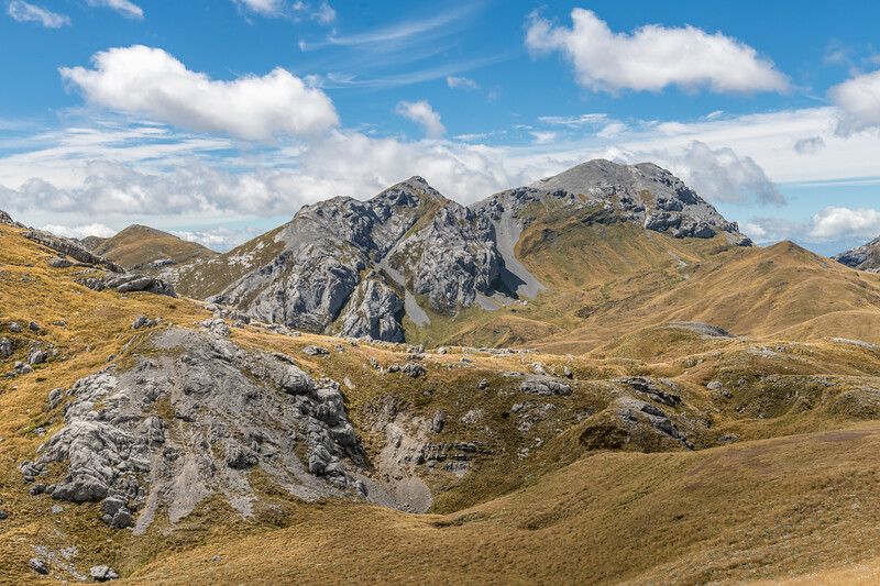 Mount Bell from the north-west. Kahurangi National Park.