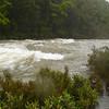 A flooding D'Urville River