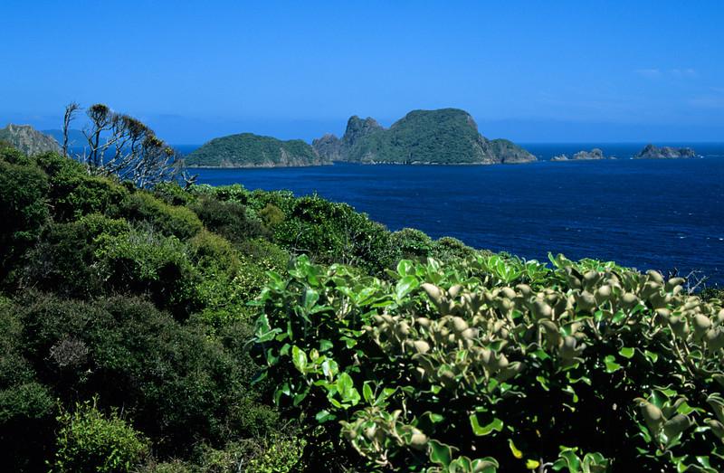 Ruggedy Islands