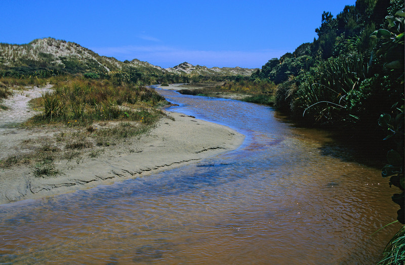 Duck Creek, Mason Bay