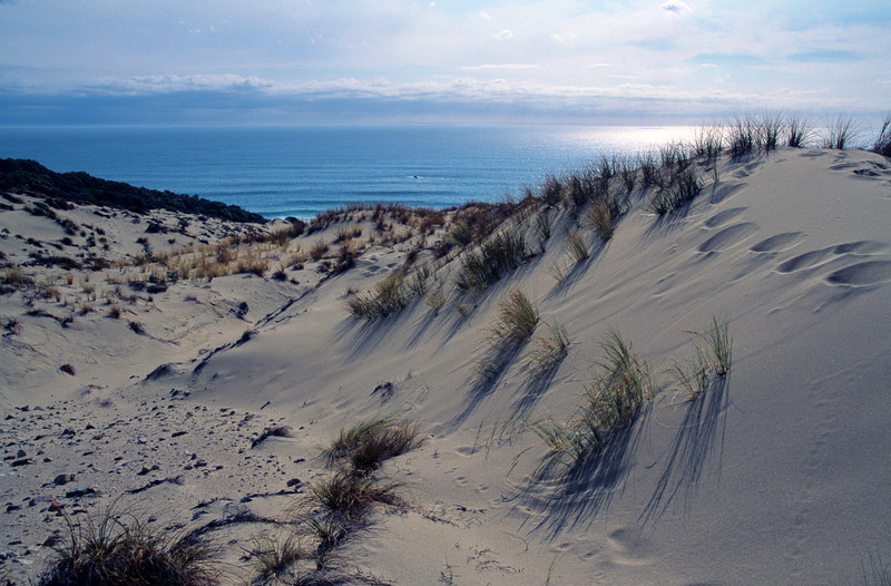 Sand dunes, Big Hellfire Beach