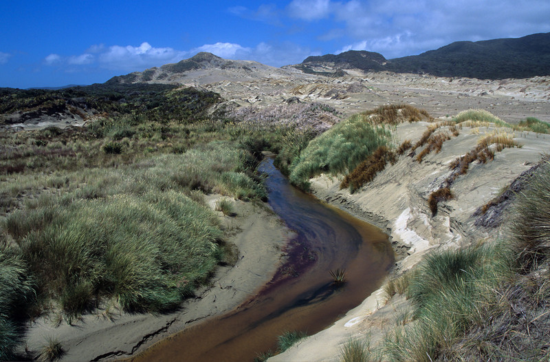 Duck Creek and Big Sandhill, Mason Bay