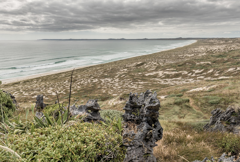 View of Long Beach from Henga lookout. Chatham Island.