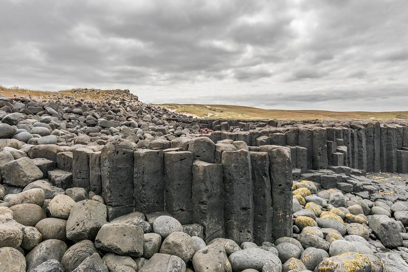 Basalt columns on the coastline at Ohira Bay, Chatham Island.