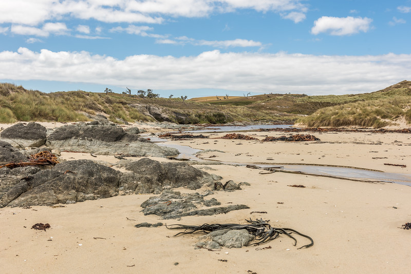 River mouth at the northern end of Long Beach, Chatham Island.