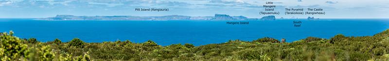 View south from Rangaika, Chatham Island.