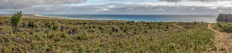 View of Hanson Bay from the Rangaika Track, Chatham Island.