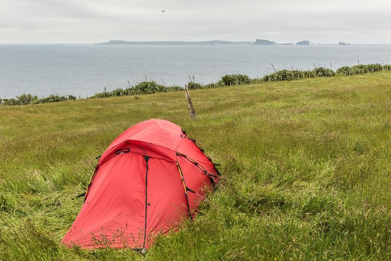 Campsite at Rangaika, Chatham Island. Pitt Island is on the horizon.