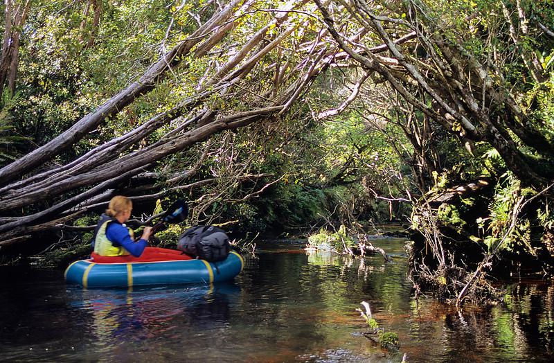 Rakeahua River