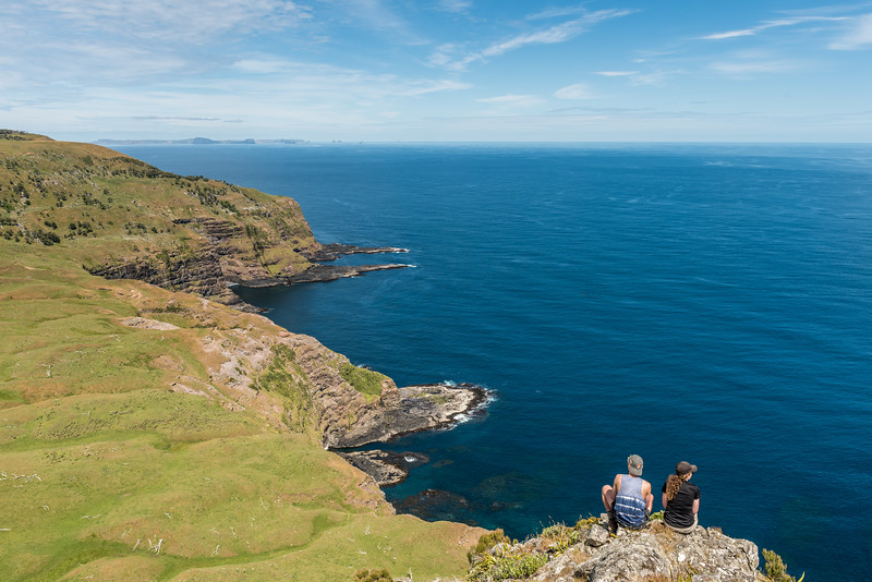 View of Chatham Island's south coast from the summit of Te Whakahewa / The Horns. Pitt Island is in the background.
