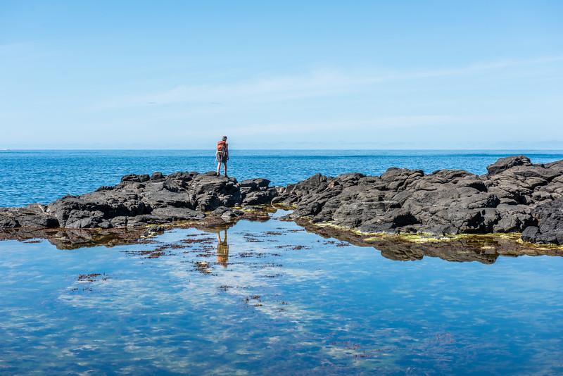 Green Point, Chatham Island.