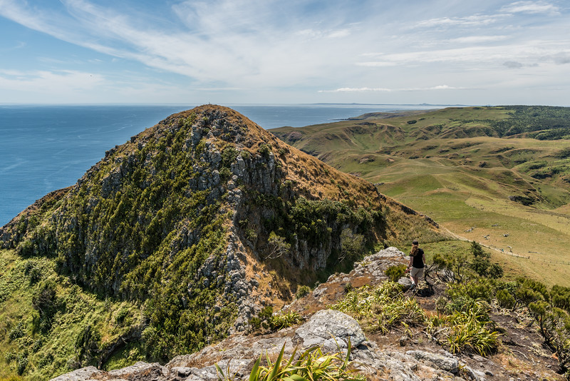 View north from the southern Horn. Te Whakahewa / The Horns, Cape L'Eveque, Chatham Island.