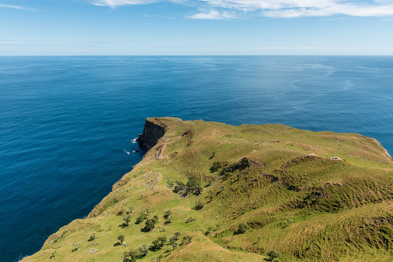 View Caple L'Eveque from the summit of Te Whakahewa / The Horns. Chatham Island.