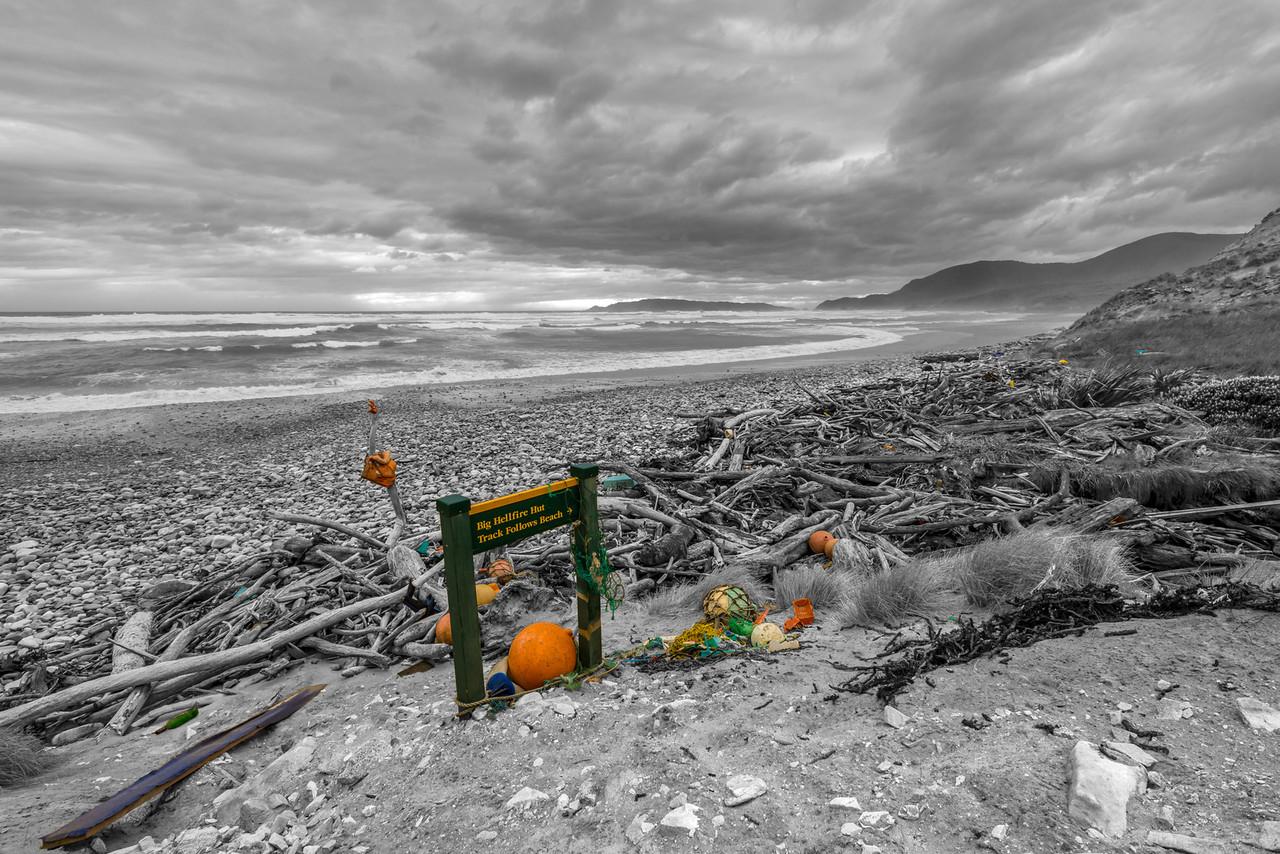 Plastic ocean, plastic beaches - Little Hellfire Beach, Stewart Island / Rakiura