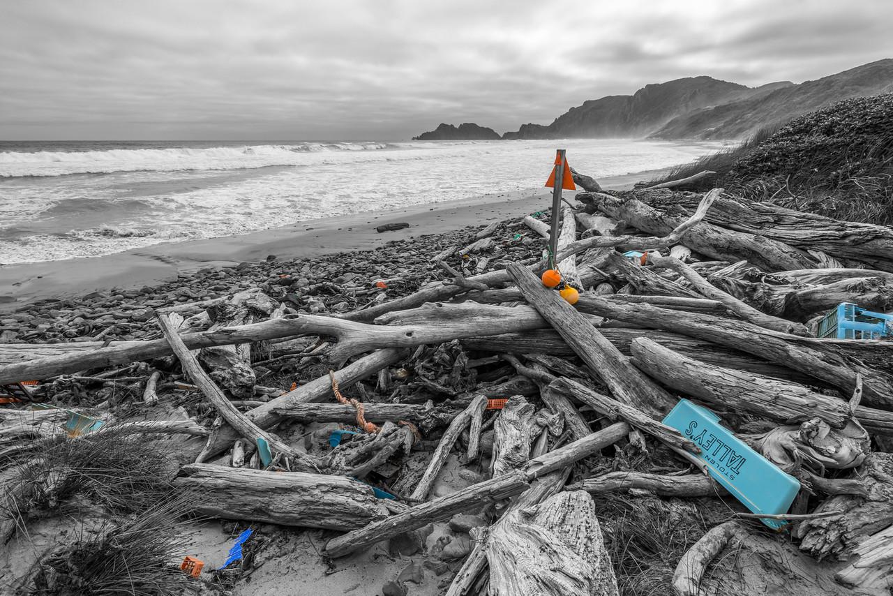 Plastic ocean, plastic beaches - West Ruggedy Beach, Stewart Island / Rakiura