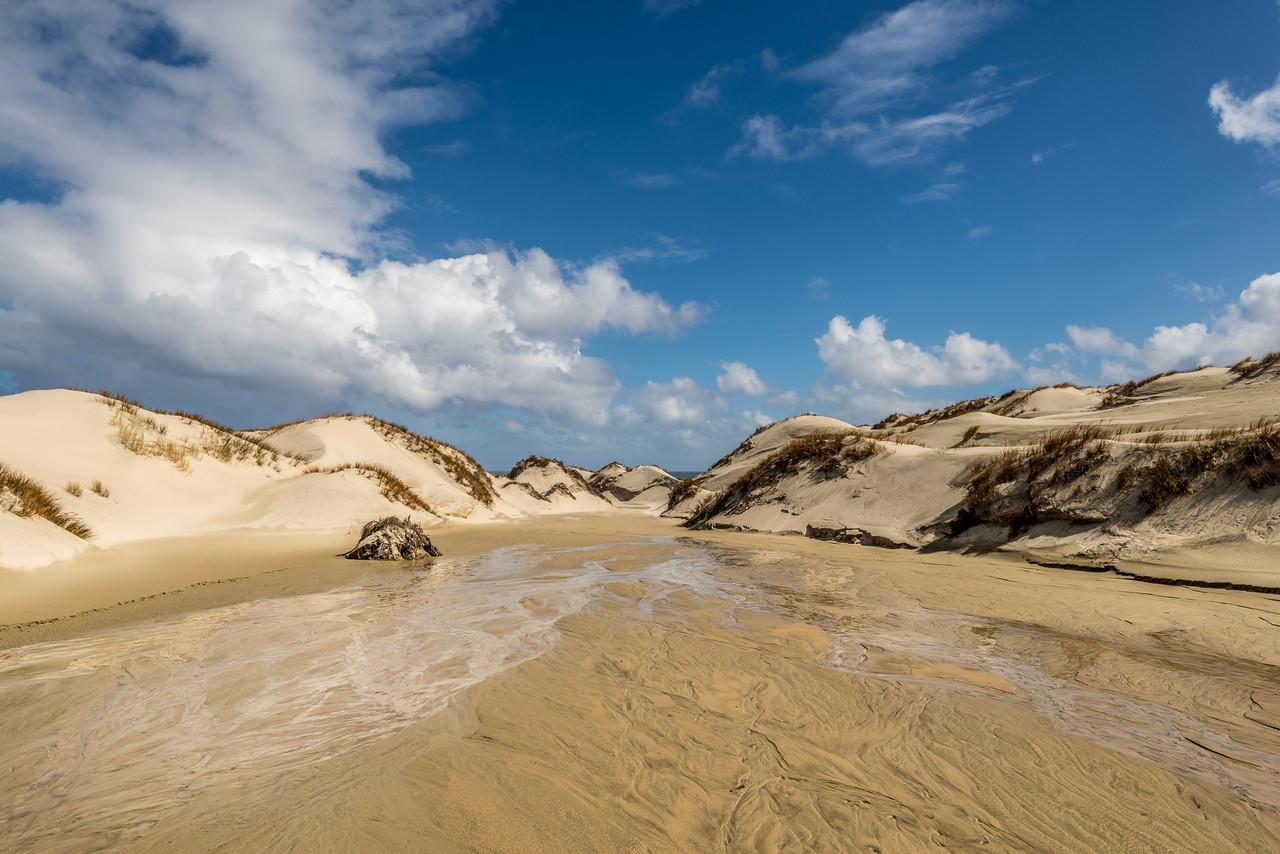 Sand dunes at Mason Bay