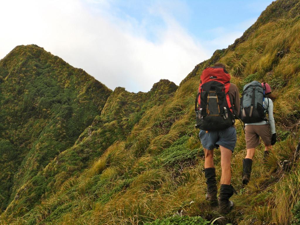 7 hours in, the cloud has lifted.  Beyond McIntosh peak, only another kilometre of nice ridgeline remains 'til Tararua Peaks!