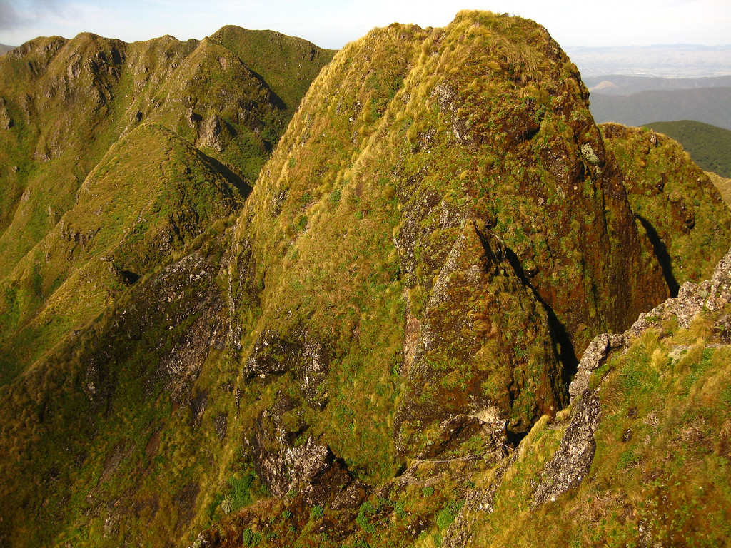 Tararua Peaks!  Tunui, the eastern one, kindly provides a rope so we don't have to carry one for miles.  Maungahuka destination is at top left.