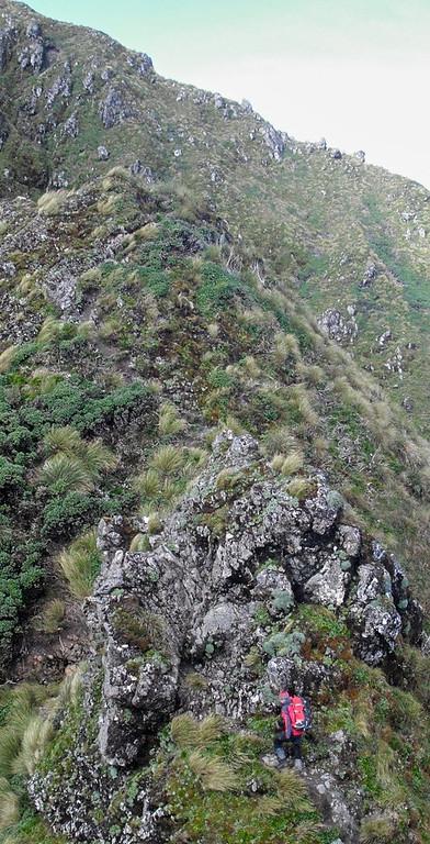 Dave climbs towards the Tararua Peaks