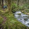 Duffy's Creek