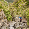 "In the Koropuku ""access gully""."