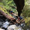 """In the Koropuku """"access gully"""" (photo - Yvonne Pfluger)."""