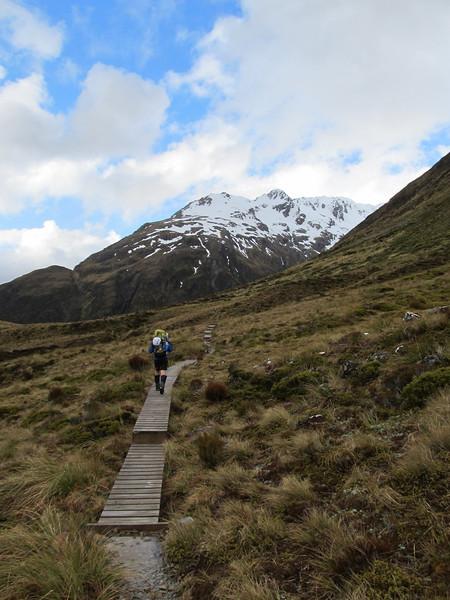 Board walk below Goat Pass.