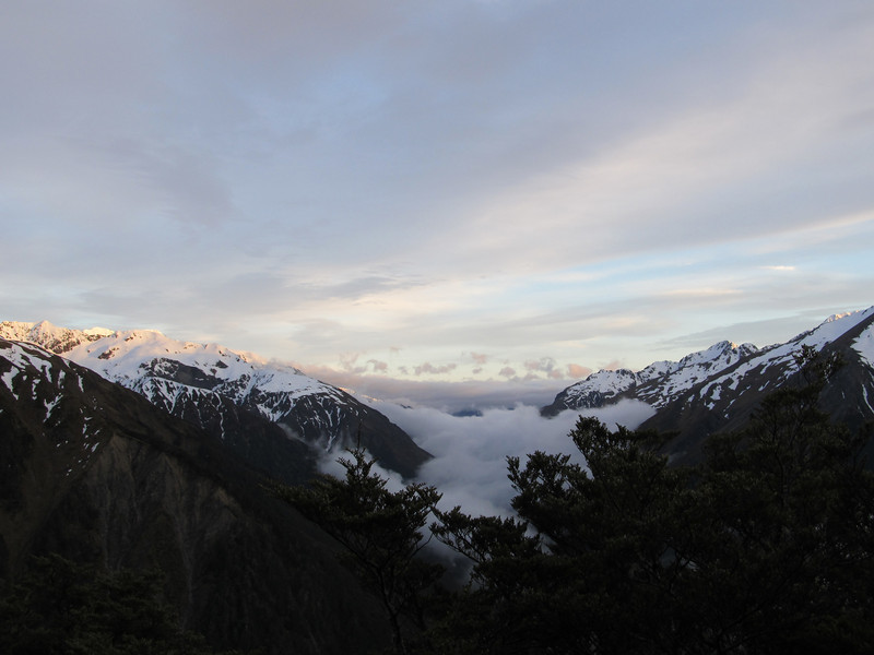 View down the Otira Valley at dawn from bushline on the Mt Bealy track.