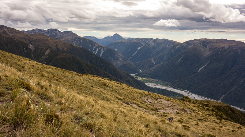 Marta enjoying easy tussock travel above the Otira. We topped out onto the spur at the bottom right corner.