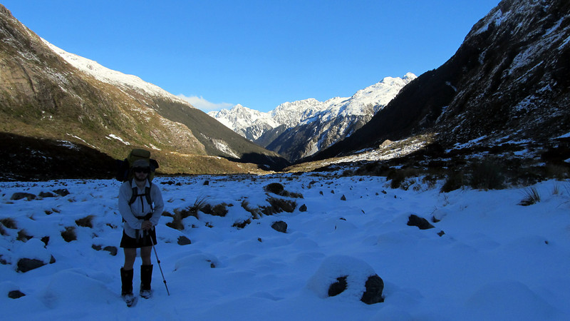 Looking down the Waimak towards Camp Spur and Mt Harper.