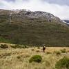 Upper Drake Flats looking up towards the Drake/Te Naihi Saddle.