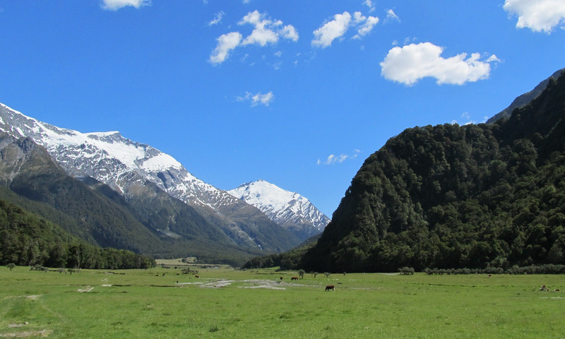 The Matukituki Valley with Mt Barff in the center, Islington Dome on the left.