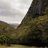 Camp opposite Io Creek looking upvalley.