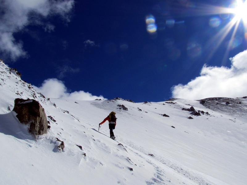 Below the summit of Mt Torlesse.