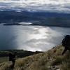 Up on the tussock slopes above Lake Wakatipu.