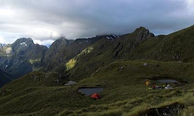 Fiordland