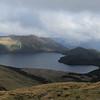 Lovely tops travel above Green Lake.