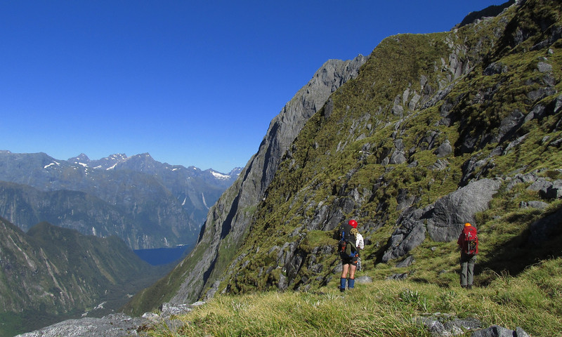 View of Milford Sound en route to the Llawrenny Peaks.