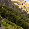 On the Routeburn Track looking towards Earland Falls.