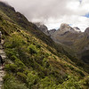 Routeburn Track above the MacKenzie basin.