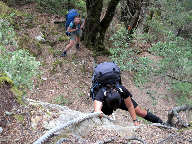 Lorraine mastering the crux of the bush track to Dasler Biv.