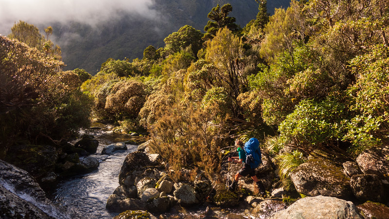Heading for the creek bed to avoid the scrub (photo -  James Thornton).