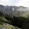 Mt Zeilian from bushline.