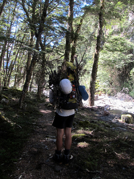 Carrying fire wood to the campsite.