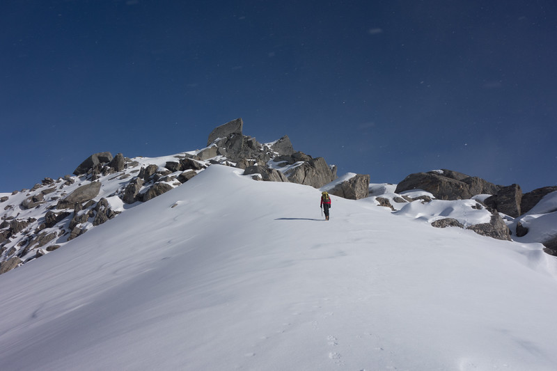 On Mt Hawkins' snow cap heading for the summit.