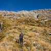 On the steep tussock face below the NE ridge of Hawkins.