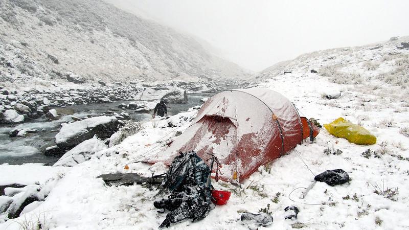 Camp in Thomson Stream