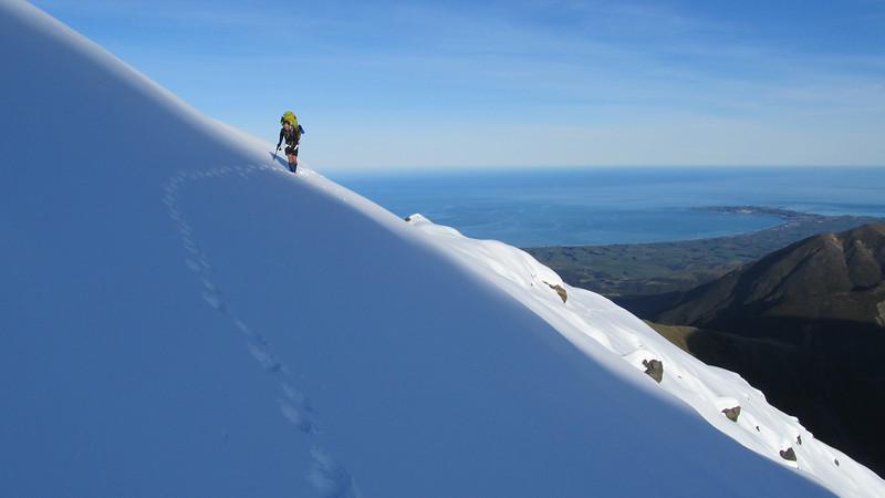 High on Surveyor Spur, Kaikoura peninsula below.