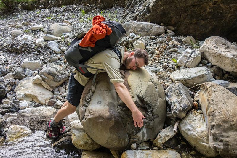 Hugging a spheroidal concretion.